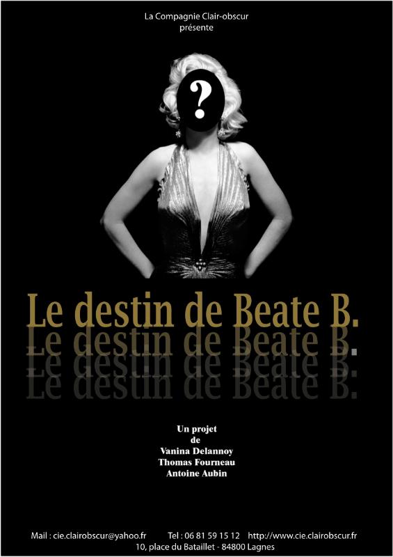 le-destin-de-beate-b-vanina-delannoy